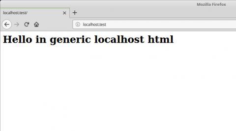 localhost.test generic localhost dnsmasq