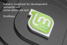 Linux Mint 19 generic DnsMasq localhost